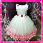 Hot Pink Bridesmaid Girls Party Dress Up 9Mth-1-2-3-4-5