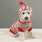 Casual Canine Striped Hoodie Dog Sweater Coat  LIMITED SIZES! SALE! Adorable!