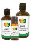 100% Natural Ginger Essential Oil - Multi Size, FREE P&P (Aromatherapy)