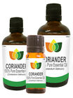 Coriander Essential Oil Pure Natural Authentic Coriandum Sativum Aromatherapy
