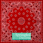 BANDANNA PATTERN CRAFT VINYL #1 Red & Black Vinyl Decal Scrapbooking Sheets