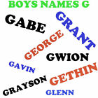 'G' Boys Name Iron On Transfer for T Shirts , Pillow Case ect personalised