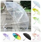 Colourful Clear Umbrellas / Brolly | Wholesale