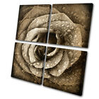 Floral Rose Flowers Love MULTI CANVAS WALL ART Picture Print VA