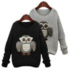 Long-sleeved Owl pattern  round neck Girl Women New sweater Coat Outwear XD0024