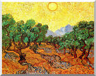 Olive Trees with Yellow Sky and Sun Vincent van Gogh Stretched Repro Art Print