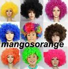 Fashion 60's 70's 80's Curly Afro Wig Fancy Dress Costume Funky Disco Wigs