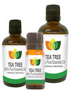 100% Natural Tea Tree Essential Oil - Multi Size, FREE P&P (Aromatherapy)