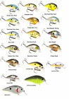 Strike King KVD 1.5SH Shallow Crankbait - Assorted Colors