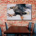 ArtWall Mark Adlington 'Talons-White Tailed Sea Eagle' Gallery-Wrapped Canvas