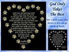 ENGRAVED PET MEMORIAL POEM NAME PLATE Multiple Sizes & Poem Choices DOG CAT