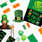 St Patricks Day Accessories - Balloons Bunting Souvenirs Hats Teddies Wigs Lot