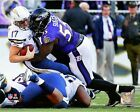Terrell Suggs Baltimore Ravens 2014 NFL Action Photo RO086 (Select Size)