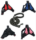 Any Size & Color - iPuppyOne - AIR VEST - Dog Puppy Harness - 8 Colors, 5 Sizes