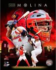 Yadier Molina St. Louis Cardinals 2014 MLB Composite Photo (Select Size)