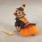 Choose Size - Casual Canine - Dog Puppy Halloween Costume - Spellhound Witch