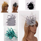 Ladies Women's Elegant Fascinator Hat Clip Veil Hat Feather Mesh Wedding Races