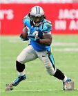 DeAngelo Williams Carolina Panthers 2014 NFL Action Photo (Select Size)