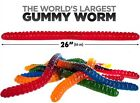 World's Largest Gummy Worm Flavored Giant Gummi Worms 3 lbs.