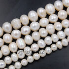 "Natural Freshwater Pearl Freeform Loose Charm Beads 14"" 5mm 6mm 7mm 8mm 10mm"