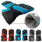 Trendy Men Winter Motorcycle Hiking Ski Snow Snowboarding Gloves Waterproof - CB