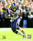 Steven Jackson St. Louis Rams Photo Picture Print #1223