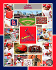 St. Louis Cardinals 2015 MLB Licensed Team Composite Photo RU157 (Select Size)