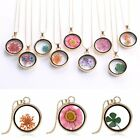 New Natural Real Dried Flower Resin Round Glass Floating Locket Pendant Necklace