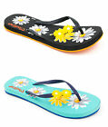 Ladies Pineapple Island Mixstar Flip Flops with Daisies - 2 Colours