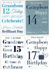 For A Special Grandson on your 12th 14th 15th Or 17th Birthday Card