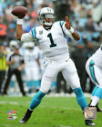 Cam Newton Carolina Panthers 2015 NFL Action Photo SI079 (Select Size)