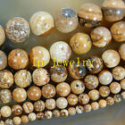 "Rare Natural Picture Jasper Gemstone Round Beads 15"" 6 8 10mm PiCK size##KH052"