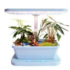 Keisue Household hydroponic Grow light plant lamp Micro Farm flower garden -