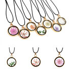 Pop Natural Real Dried Flower Resin Round Glass Floating Locket Pendant Necklace