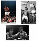 3 x Muhammad Ali Boxing Posters A3 Size