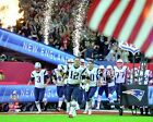 Tom Brady New England Patriots Super Bowl LI Action Photo TU090 (Select Size)