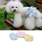 Chic Pet Physiological Pants Cute Bowknot Female Dog Short Puppy Underwear Nappy