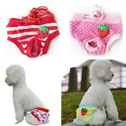Newly Pet Physiological Pants Doggy Menstrual Underwear Cute Pattern Panties 1PC
