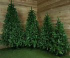 4ft, 5ft, 6ft, 7ft, or 8ft Colorado Spruce Christmas Tree in Green