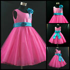 Free Shipping X'mas Hot Pink Blue Wedding Party Flower Girls Dresses AGE 1-12Y