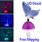 Creative Fiber Optic Butterfly LED Color Change Night Light Decoration Lamp Gift