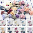 Artificial Double Flower Stamen Tip Pearlized Craft Cakes Home Decoration DIY