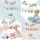 Ginger Ray 1st Birthday Boy Girl Cake Smash Complete Party Photo DIY Kit Bunting