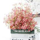 30Pcs/bag Seeds Pink Gypsophila (Baby's Breath) Flower Bonsai Plant Home Decor