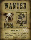 DOG WANTED POSTER FUNNY BRITISH BULLDOG FUNNY CUTE  :3 SIZES TO CHOOSE FROM