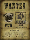 DOG WANTED POSTER FUNNY PUG METAL PLAQUE:3 SIZES TO CHOOSE FROM