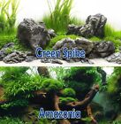 Внешний вид - Seaview Green Spike/Amazonia 18in Aquarium Terrarium Double-sided Background