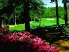 THE MASTERS 2019 *Ultimate Package* Fri. April 12