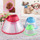 Puppy Pet Dog Cat Comfy Cone Neck Collar Anti-Bite Medical Recovery Protection C