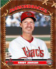 Randy Johnson Arizona Diamondbacks MLB Studio Plus Photo HZ135 (Select Size) on Ebay